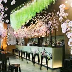 Sakura pop up bar at Sake no Hana