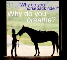 this is what im gonna say wen my friends ask me why i horse back ride