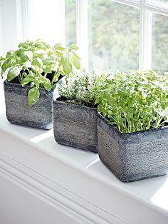 NEW Three Textured Grey Planters