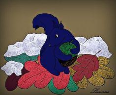 O modré veverce