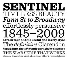 This is gorgeous. It's a typeface called Sentinel, by Hoefler & Frere-Jones.