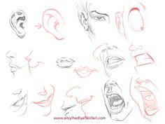 karikatürde dudak nasıl çizilir
