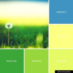 Dandelion | Green and Yellow |Color Palette Inspiration. | Digital Art Palette And Brand Color Palette.