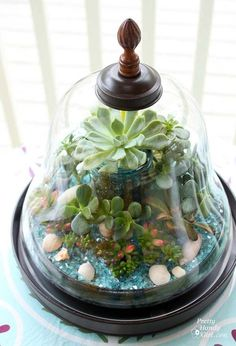25 Ideas for Tabletop Gardens & Terrariums | Pretty Handy Girl