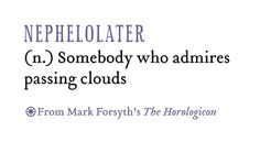 NEPHELOLATER (n) Somebody who admires passing clouds