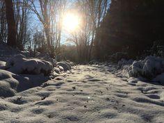 ein Wintertag auf dem Waldfriedhof-Loh in Lüdenscheid