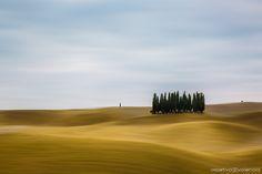 Capturada enla Toscana este otoño en compañía de algunos de nuestros alumnos de cursos y talleres de fotogafía de Objetivo Valencia