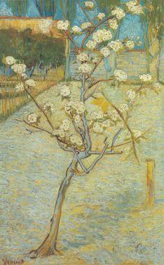 Pero in fiore, Vincent van Gogh