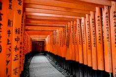 Fushimi Inari - Japão Hey It's Mi