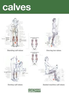 Calves are a nightmare for many gym goers simply because of how stubborn they are. CALF WORKOUT FOR MASS. Gym Workout Chart, Best Leg Workout, Bum Workout, Leg Workouts, Chest Workout Women, Calf Exercises, Yoga Pilates, Workout Posters, Muscle Building Workouts