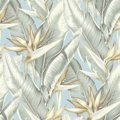 Image result for palm springs arcadia wallpaper