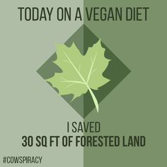 Very inspired by cowspiracy! I made some graphics from the stats in the documentary. Feel free to take them and repost them.