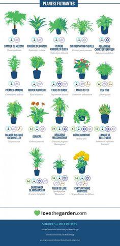 http://dailygeekshow.com/nasa-plantes-interieur-polluant/