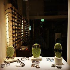 New window display #cactus #sunglasses #grey #green #black #ss17 #opticagougas