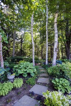 Carolyn Faulkner gardens in Brunswick, Maine on approximately 3 acres.