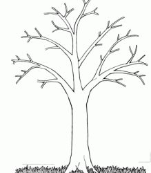 Tree without leaves coloring page to print