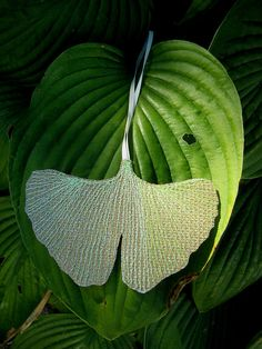 Items similar to Ginkgo leaf ornament / pendant with sewn green ginko leaf veins, upcycled billboard, made to order on Etsy Leaf Pendant, Billboard, Upcycle, Plant Leaves, Recycling, Free Shipping, Ornaments, Street, Creative