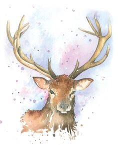 Watercolour print - Stag £8.00