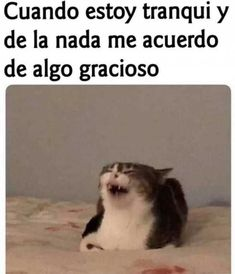 Log ingracioso Log in Craft Video 5 minute crafts videos Craft Video 5 minute crafts videos Nostalgia at its best jajajajajajajajaja 🤣 ➡️ ➡️ Entrar aquí ➡️ ➡️ ➡️ 15 coole Möglichkeiten, zu binden - حلول - 25 Workplace Memes Everyone Should Laugh At By Funny Jokes, Hilarious, Spanish Memes, Funny Spanish, Animal Jokes, Avengers Memes, Quality Memes, New Memes, Sports Humor
