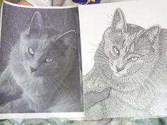"Stipple Technique Drawing 8 1/2 x 11 with photo by Gina Thurmond. ""Kat"""