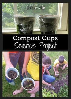 Compost Cups Science Project. This no fail science experiment will teach your children all about decomposition! The perfect start to your spring garden!| The Happy Housewife