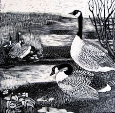Canada Geese Art Print at Bryn Bach Park Lake from by KayLeverton