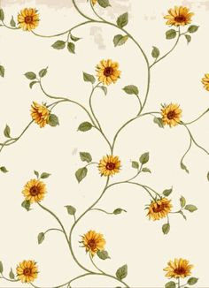 """Search Results for """"wallpaper de girasoles vintage"""" – Adorable Wallpapers Hd Flower Wallpaper, Cute Wallpaper For Phone, Pattern Wallpaper, Wallpaper Backgrounds, Iphone Wallpaper, Sunflowers Background, Paper Sunflowers, Iphone Hintegründe, Sunflower Pictures"""
