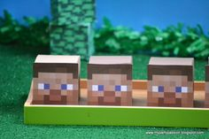 "Photo 1 of 41: Minecraft/Creepers / Birthday ""Minecraft Birthday"" 