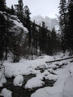 Snowshoeing back and forth across King Creek in King Creek Canyon, Kananaskis Country, Alberta, Canada.