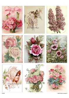 beste van Vintage 2019 Vintage in 1453 flowers afbeeldingen gqd841