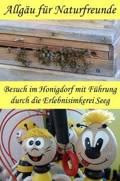 Besuch im Honigdorf: Führung durch die Erlebnisimkerei Seeg World, Europe, Small Bees, Playground, Road Trip Destinations, Peace, The World