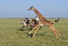 Horseback riding safari in Kenya