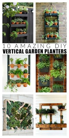 A small space or blank wall is all you need to create beautiful vertical gardens with these DIY planter ideas gardens gardening herb planter DIYplanter planterideas verticalplanter spring DIY Vertical Garden Planters, Herb Planters, Succulents Garden, Vertical Gardens, Planter Ideas, Outdoor Wall Planters, Diy Wall Planter, Small Space Herb Garden Ideas, Outdoor Shelves