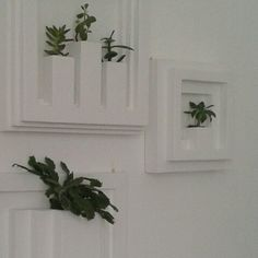 Composition,vertical garden,living art,wall planters,indoor,interior design,minimal