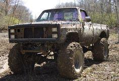 Anyone wanna go boggin in a truck?