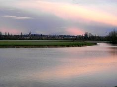 Port Meadow at dusk. Oxford, England. http://weekswithwings.wordpress.com/2012/01/28/port-meadow/