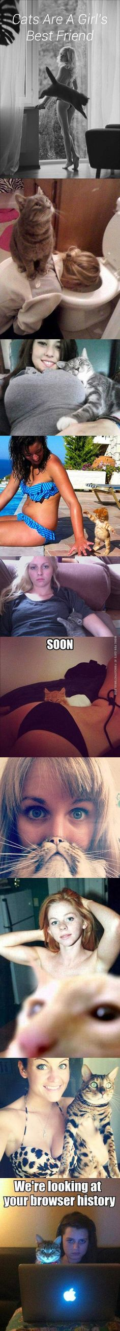 lol at the kitty with the girl throwing up....and as a side note; it must be universal, cats LOVE boobs lol, mine sure do Xp lol