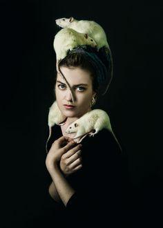 21 Dreams of Rats Meaning - Dreaming of Dead Rats Killing Rats, Arte Elemental, Animals And Pets, Cute Animals, Rat Queens, Dumbo Rat, Fancy Rat, Cute Rats, Mundo Animal