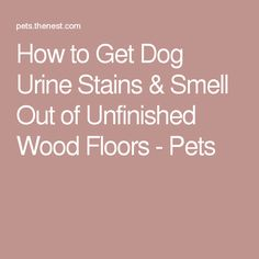 troubleshooting laminate flooring | urine stains and clean freak