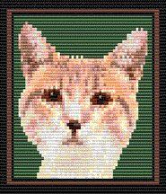 Tan Cat (Loom/Square) by Rita Sova