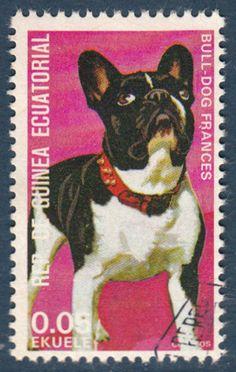 French Bulldog DOG Small Postage Stamp CTO Equatorial Guinea   eBay