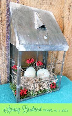 Spring Bird Nest Decor via http://deniseonawhim.blogspot.com