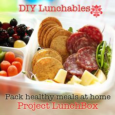 Do it yourself healthy salami, cheese Lunchables: vegetables, berries, fruit, gluten free rice crackers, water in reusable eco-friendly bento boxes.