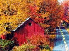The Appalachian & Pocono Mountains are just beautiful, in Fall. This is Pennsylvania