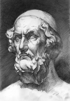 Homer head study by agnidevi Human Anatomy Art, Anatomy Drawing, Cool Art Drawings, Drawing Sketches, Pencil Sketch Images, Academic Art, A Level Art, Sketch Painting, Art Studies