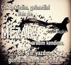 Bazen şiirler mezar olur şaire.. |Leytun Kaplan