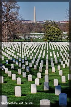 The American Way;  pursuit of freedom and the fight against tyranny.    Arlington Cemetery ~ This photo does not do the place justice.  The sacrifice is over whelming.