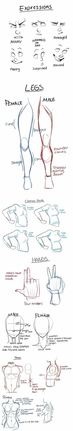 How to draw multiple body parts
