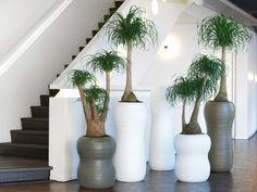 hamrony planter supplied by koberg