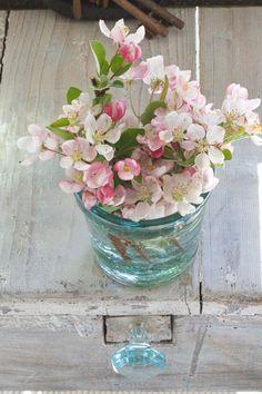 Ana Rosa pink wildflowers in aqua glass jar My Flower, Fresh Flowers, Spring Flowers, Beautiful Flowers, Arte Floral, Spring Colors, Daffodils, Planting Flowers, Floral Arrangements